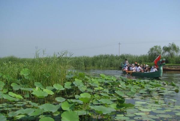 白洋淀旅游景点图片:鸳鸯岛 鸳鸯岛:占地面积64000平方米,周围被芦苇