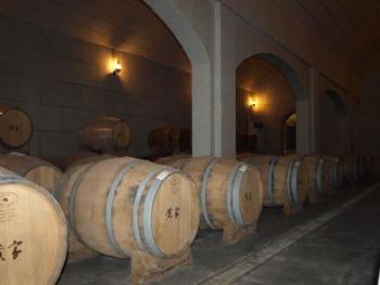 定州黄家营葡萄酒庄