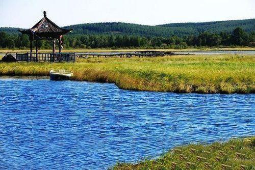 这里风景优美,环境优越,您想知道塞罕坝国家森林公园的历史吗?