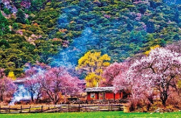 西藏林芝旅游攻略 2013西藏林芝旅游攻略