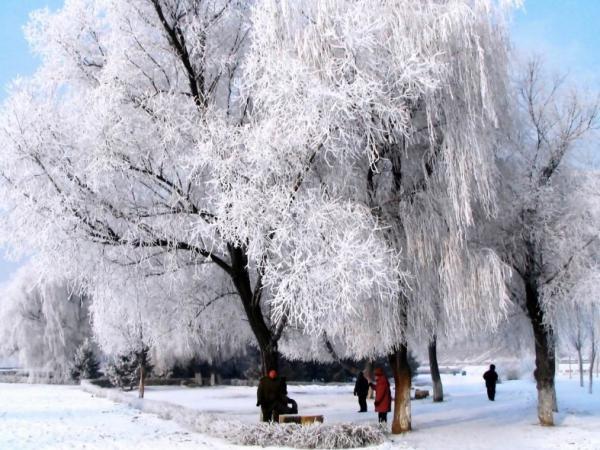 冬季的大连有哪些旅游景点