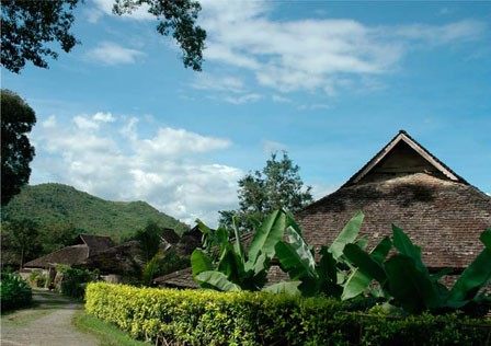 西双版纳勐海简介 2013西双版纳勐海旅游