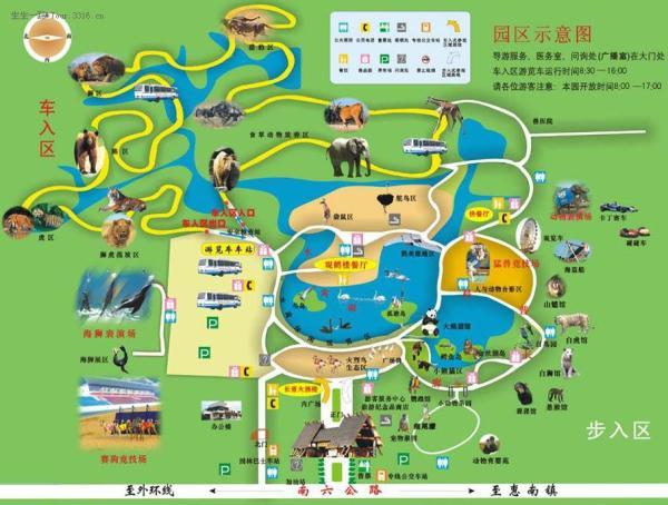 上海野生动物园好玩吗 上海野生动物园游览路线