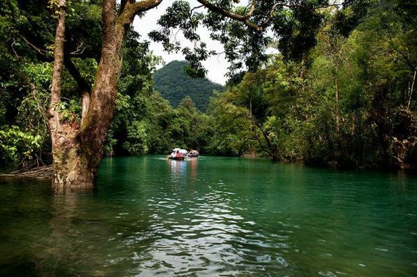 都说水上森林是小七孔最好玩的地方,水很浅,很清澈,有大石头铺面很图片