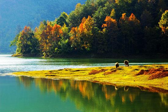 深圳周边有哪些旅游景点
