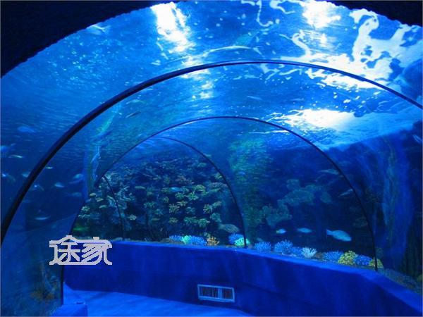 广州海洋馆简介 广州海洋馆景点介绍