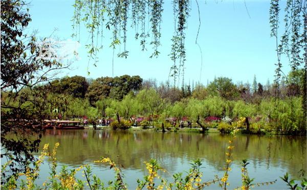 """""""春天的西湖是美丽的季节""""怎么改病句"""