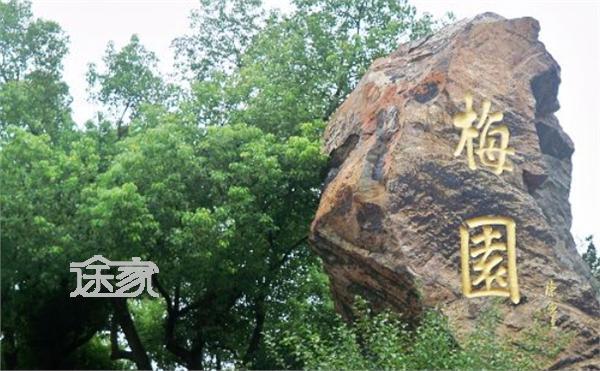 位于无锡市西郊的梅园横山风景区,在东山和浒山南坡,距市区5公里左右