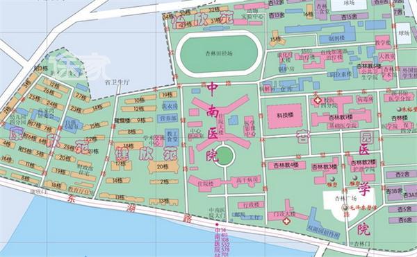 武汉大学地图 武汉大学地址 武汉大学交通路线图片