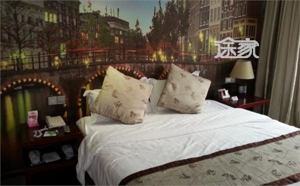 背景墙 房间 家居 酒店 设计 卧室 卧室装修 现代 装修 600_371