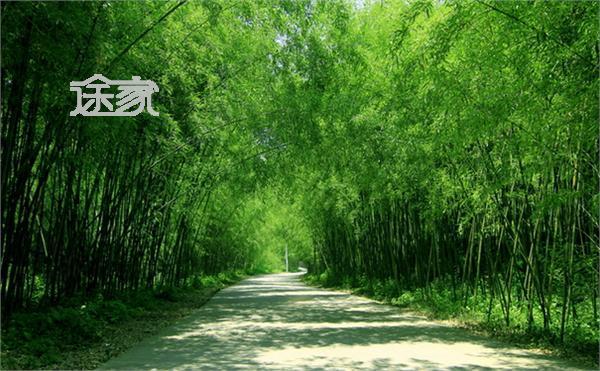 洛阳旅游景点介绍 洛阳旅游景点大全