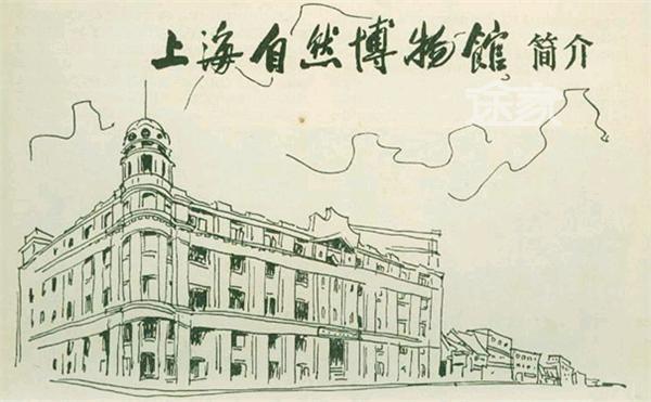上海自然博物馆手绘图