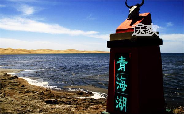 旅游指南 西宁旅游指南 正文  青海湖鸟岛是一个鸟儿的王国,这里聚集