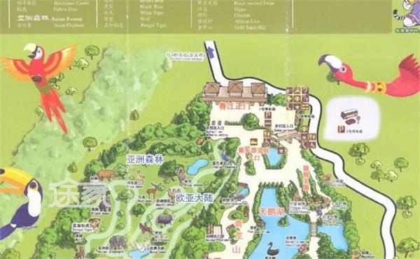 上海动物园游览图_动物园路线图图片_动物园路线图图片下载