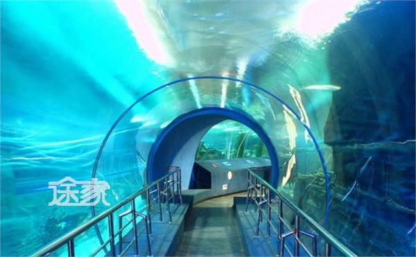 鼓浪屿海底世界好玩吗 鼓浪屿海底世界门票多少钱