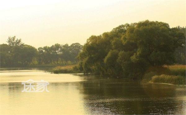 北京翠湖湿地公园对外开放吗 北京翠湖湿地公园好玩吗