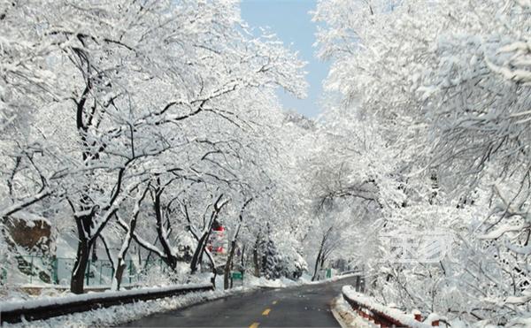北京雪景-北京年前会下雪吗 11月9号夜间北京有望迎今冬初雪