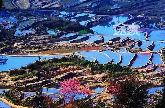 云南美景-2015春节旅行目的地推荐 2015春节旅游去哪图片