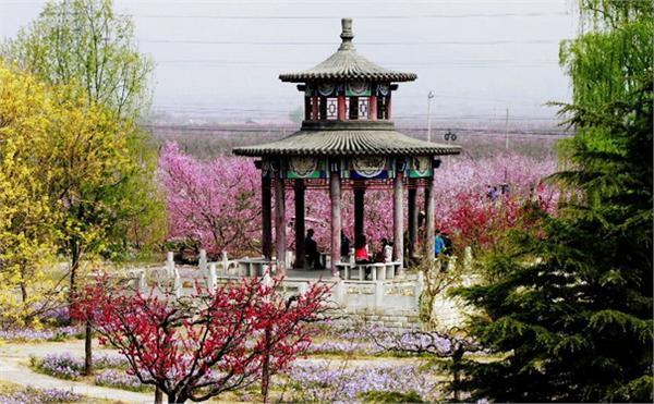 2015北京清明踏青赏花