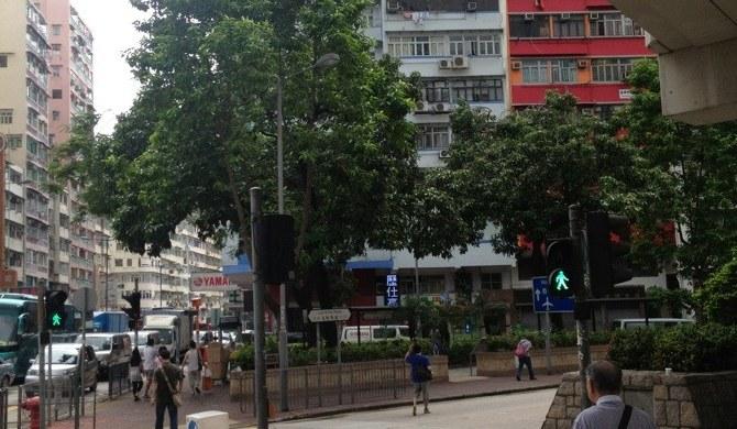 厦门油尖旺区旺角太子地铁站a太子四周边-攻略香港4天自由行居室图片