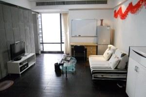 广州越秀区广州雅诗居公寓商务两房一厅(共10套)