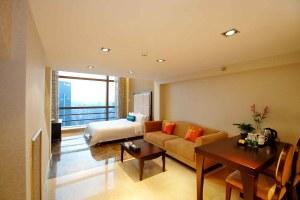广州天河区广州正佳金殿公寓复式商务双床套房(共10套)